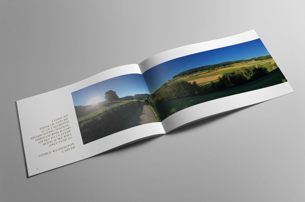 the green view - Jonas Keseberg // Visuelle Kommunikation & Grafik Design